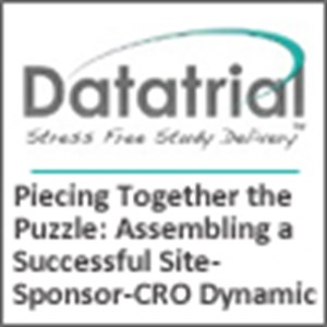 Piecing Together the Puzzle: Assembling a Successful Site-Sponsor-CRO Dynamic