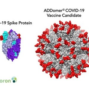 UK Biotech Imophoron Uses New Vaccine Platform to Develop COVID-19 Candidates