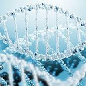 Global Gene Synthesi Market 2020: Genscript, GeneArt (Thermofischer), IDT, DNA 2.0 (ATUM)